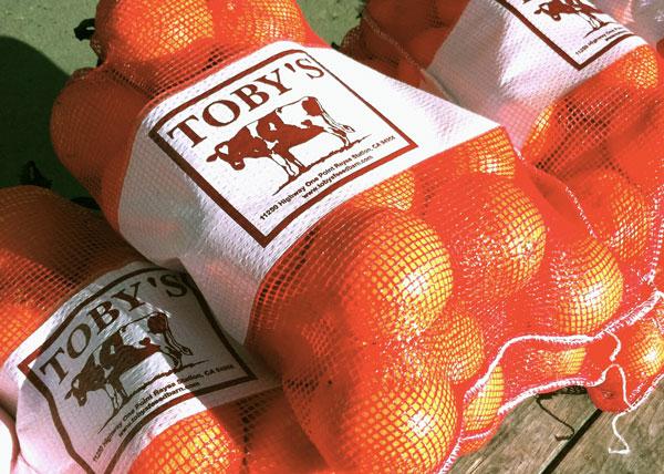 orangebags.jpg