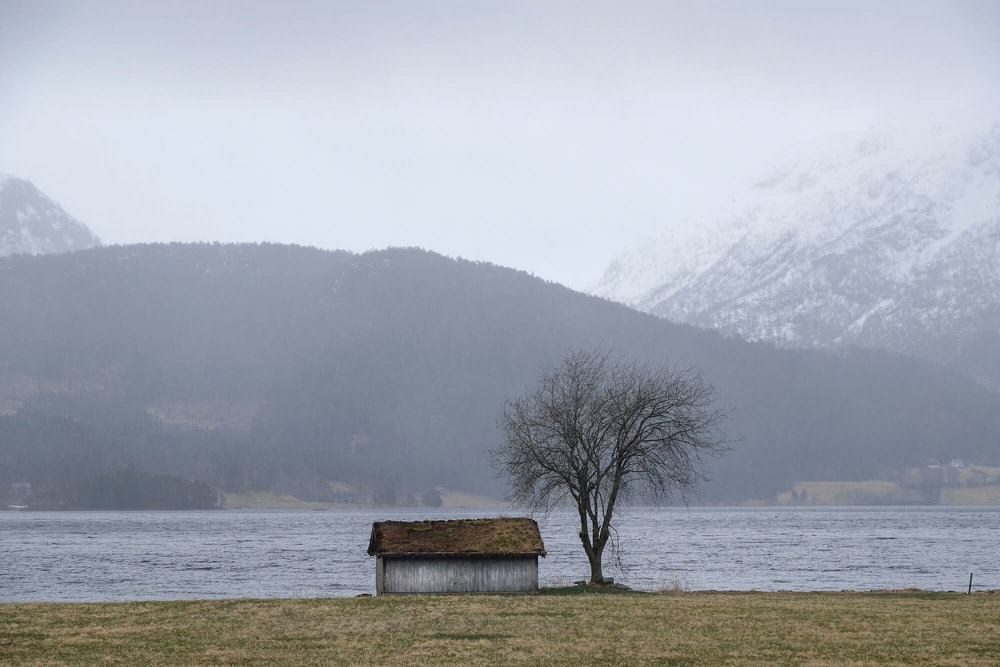 A traditional Scandinavian hunting cabin with a grass roof on the edge of a Nordic lake