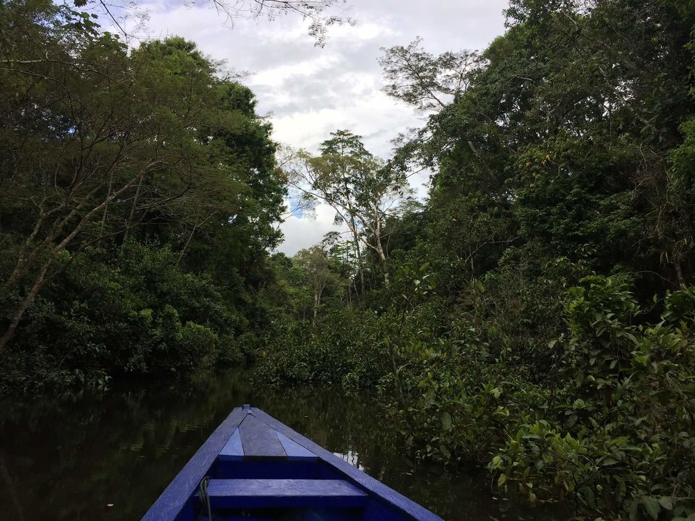 Amazon-tributary-river-Peruvian-jungle.JPG
