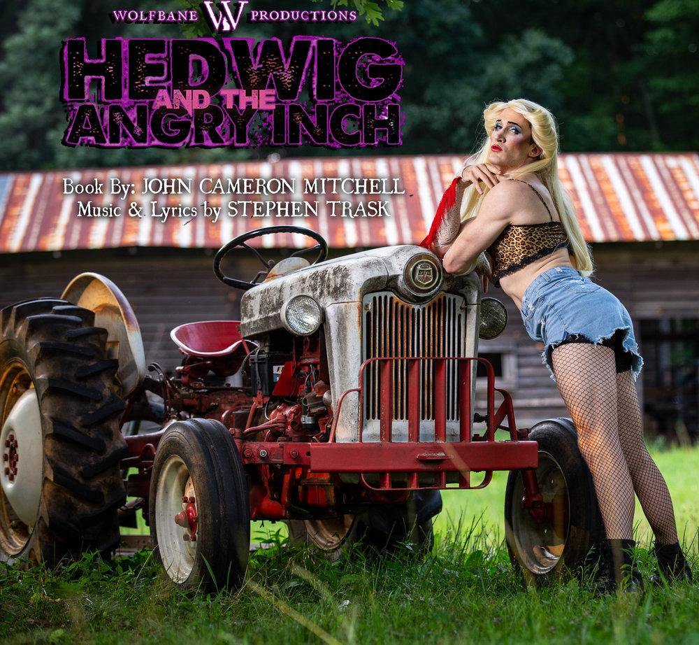 Hedwig Promo 2.jpg