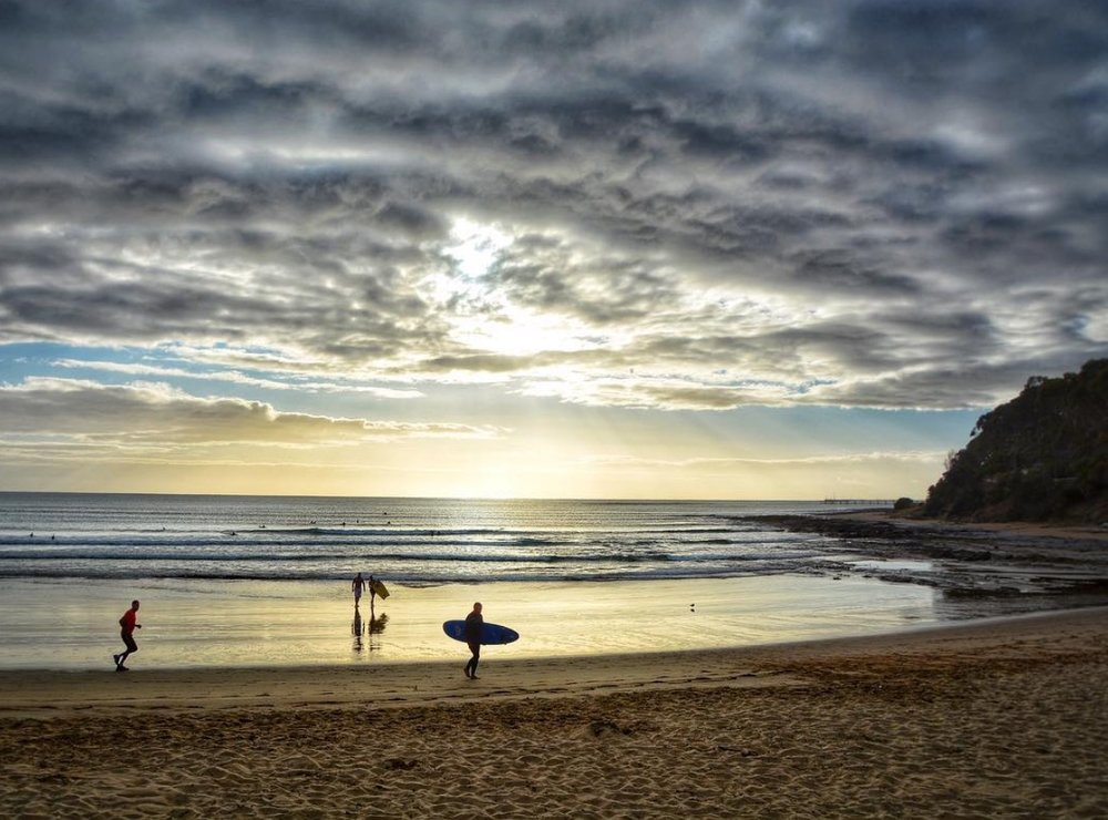 Surf - A favourite past time in Lorne. You can hire a wetsuit and a board to experience the gentle waves like a local. If you get hooked Sharkys stocks all the major brands and hardware which you'll need at the beach or in the surf.