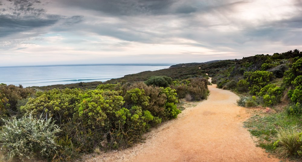 Walk - The coast is filled with natural beauty, and what better way to experience it than a walk to places that can't be reached by car.