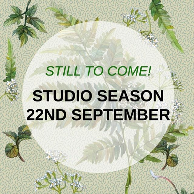 🌿Our Books and Writers Weekend may be over, but there are plenty more events to come! . . The Studio Season is a collection of five, new, strange and wonderful short plays presented in two programmes which alternate over four nights and two matinees. . . Featuring works by Paula Crimmens Aunty Ree Ken Burns Cath Harkins Korina Tuahine . . Link in bio for info #goingwestfest#theatreseason#theatre#tepou#florals#fauna#green#titirangi#stage#nz#actors#nzactors#studio#studiosessions#september#butwaittheresmore