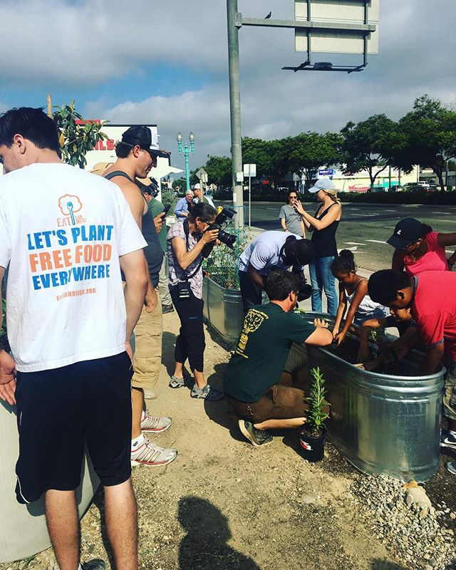 Thank you all for coming out this weekend to help garden!! Let's plant free food everywhere! If you want to join the movement or donate or have an idea for a new garden visit eatsandiego.org and let us know🍓🥒🍅 #foodisfree #eatsandiego #popup15 #elcajonblvd #cityheights