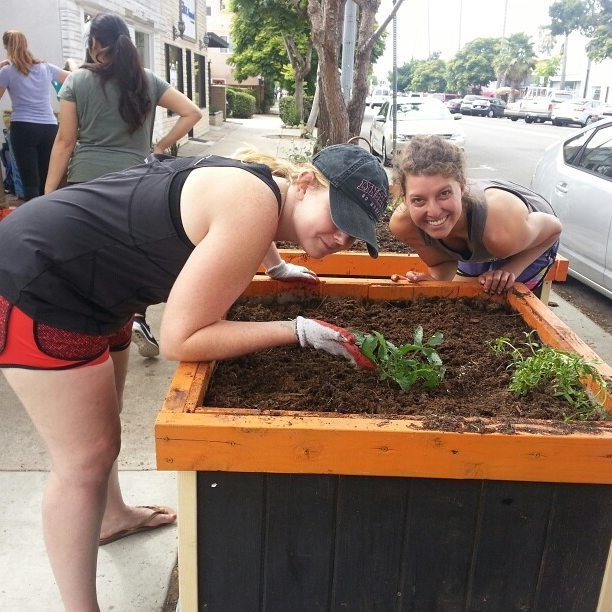 The team at Mixte Communications in Ocean Beach spent last week fixing up the sidewalk garden that started San Diego's public free food movement. (with lots of help from marvel tactical design ) . #eatsandiego #eatob #freefoodgarden #foodisfree #921OB #plantsomething #growfood #92107 #ediblelandscaping #sandiego #oceanbeach