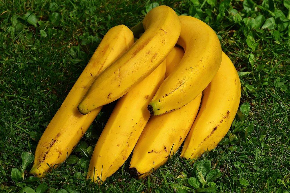 bananas-1642706_1920.jpg