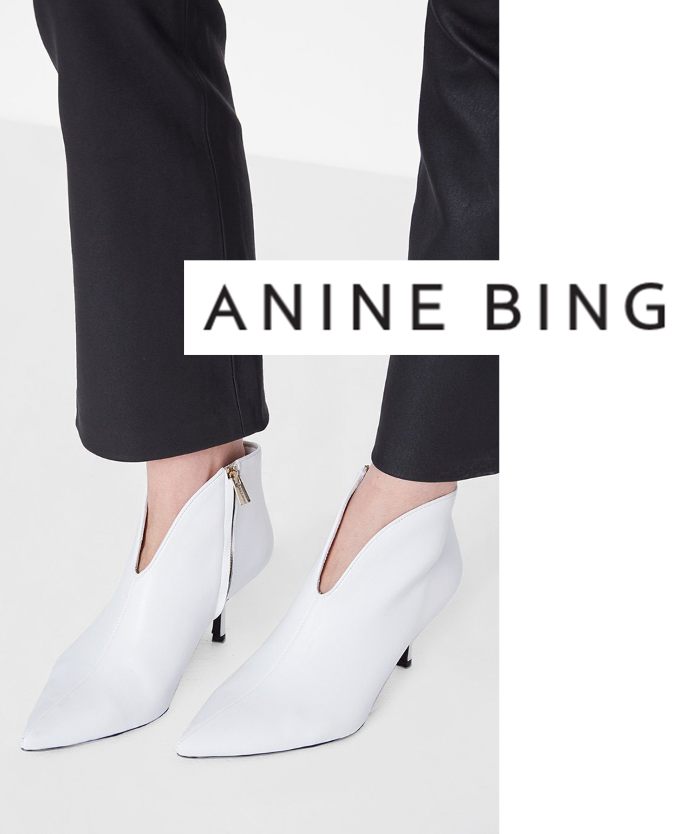 anine bing.png