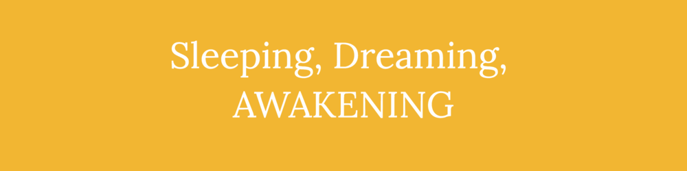 Website - banner awakening.png