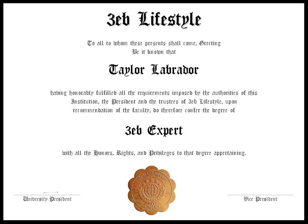 Taylor Labrador.jpg