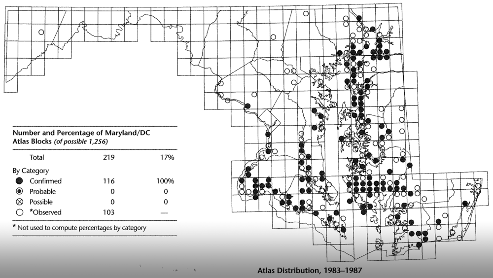 Breeding distribution of Bald Eagles in Maryland during the first Breeding Bird Atlas, 1983-1987.