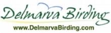 DBW logo.jpg