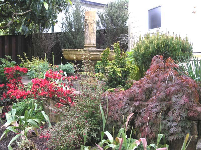 Rio Dell, CA Garden Design by Ryan Scott