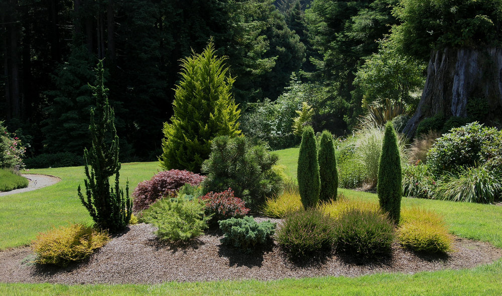Freshwater, CA Garden Design by Ryan Scott