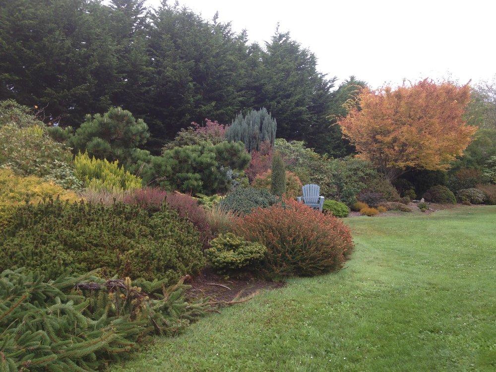Singing Tree Gardens - November