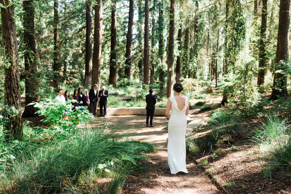 National park wedding, Boston, Travel Photographer, Angela Nunnink, Destination Wedding, Family estate wedding, Elopement, Redwood Wedding, traveling photographer