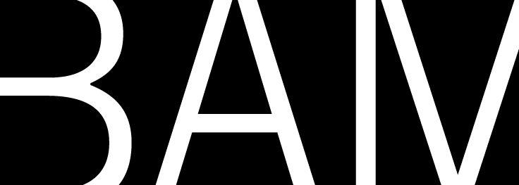 BAM_logo (2).jpg