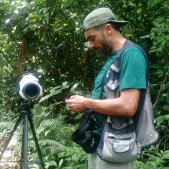 Colaborador Coordenador de Birdwatching