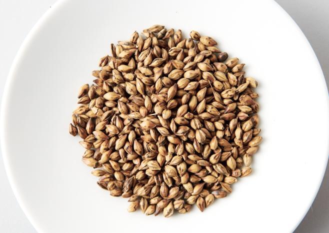 Barley_grains_3.jpg