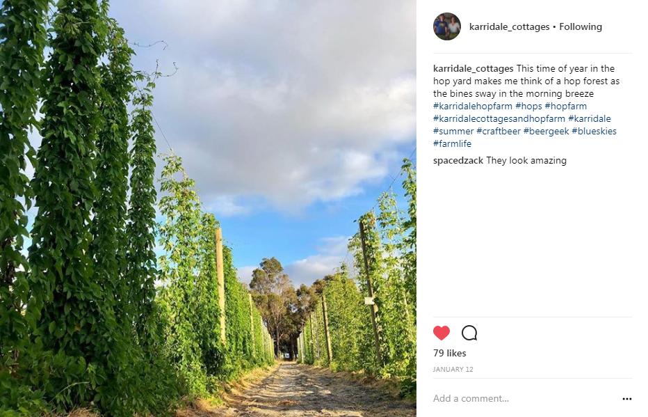 Image: @karridale_cottages Instagram account