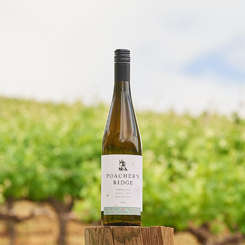 Poacher's Ridge 2018 Terroir Driven Riesling.jpg