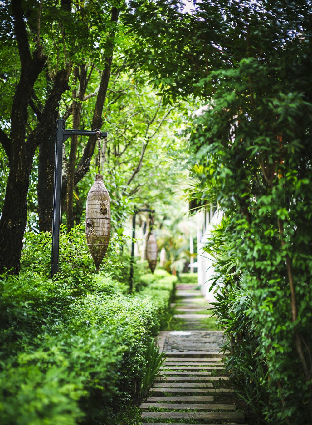 Hi_AANG_76643067_AANG_GardenPath_G_A_H.jpg
