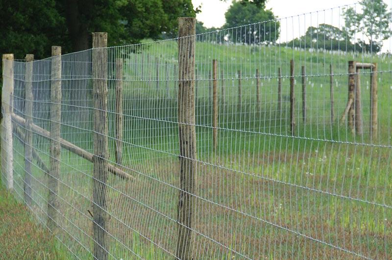 Agricultural Amp Fencing Ptp