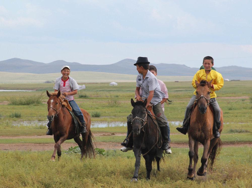 Mongolie cheval.jpg