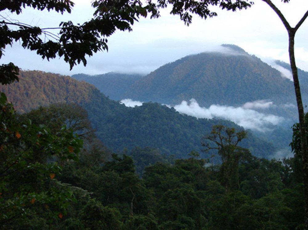 Costa Rica paysage.jpg