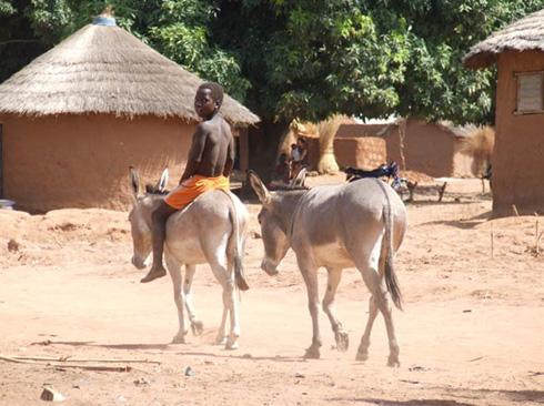 Benin-7.jpg