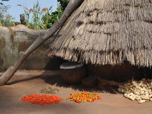 Benin11.jpg