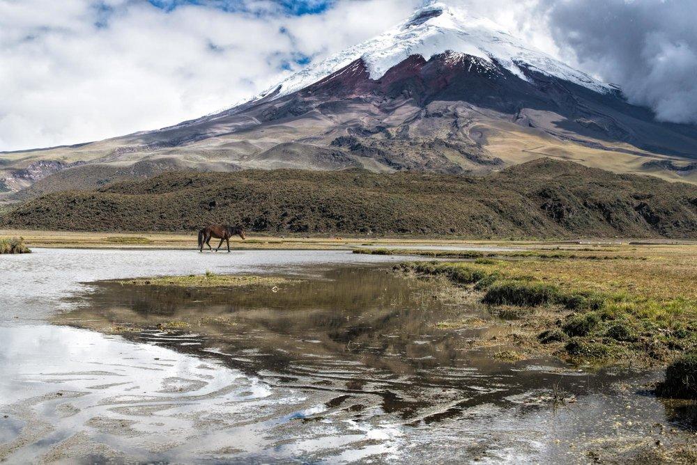 Ecotourisme-voyages-alternatifs-Equateur-En-liberte-4.jpg