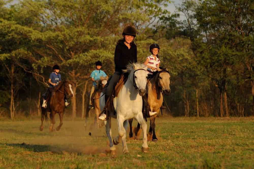 cheval-daventure-ma-ferme-africaine (3).jpg