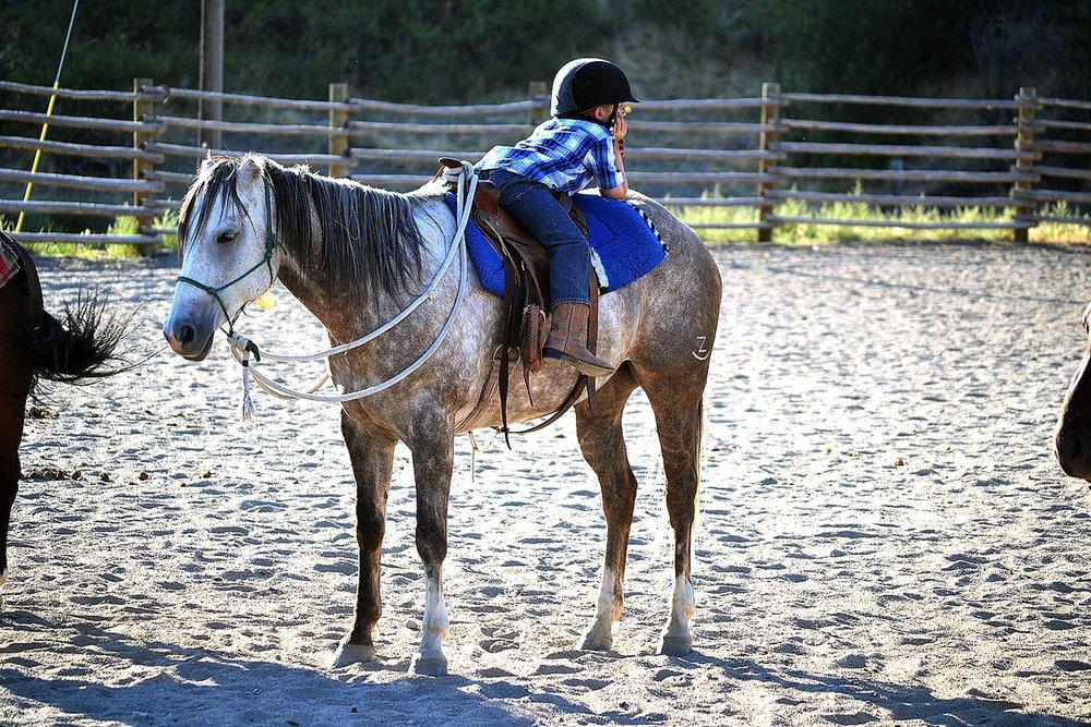 cheval-daventure-chez-les-chuchoteurs-du-montana (6).jpg
