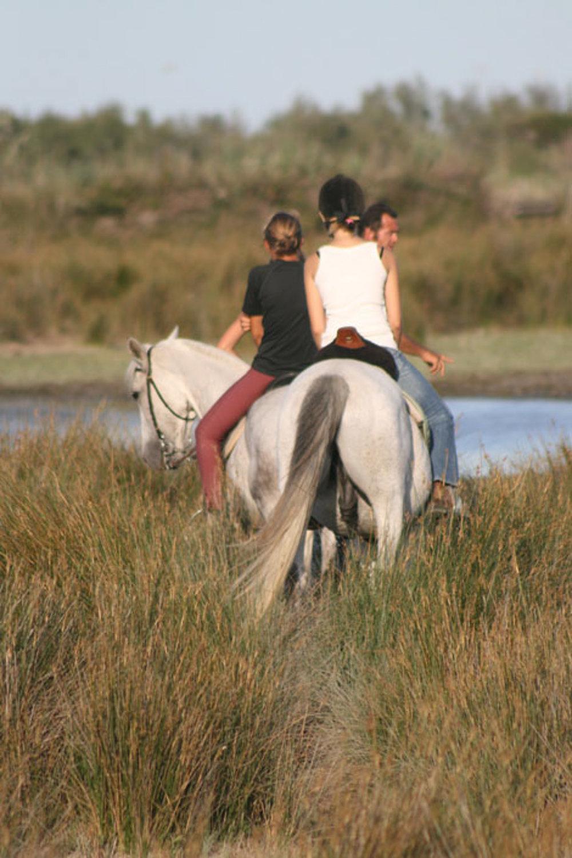 cheval-daventure-mamade-camarguaise (5).jpg