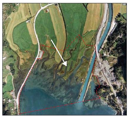 Luftfoto av deltaet (Norsk Bremuseum)