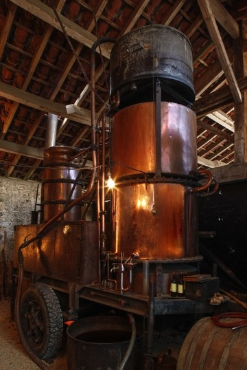 "the ""marie jeanne"" from distillery st martin over 100 yeas old"