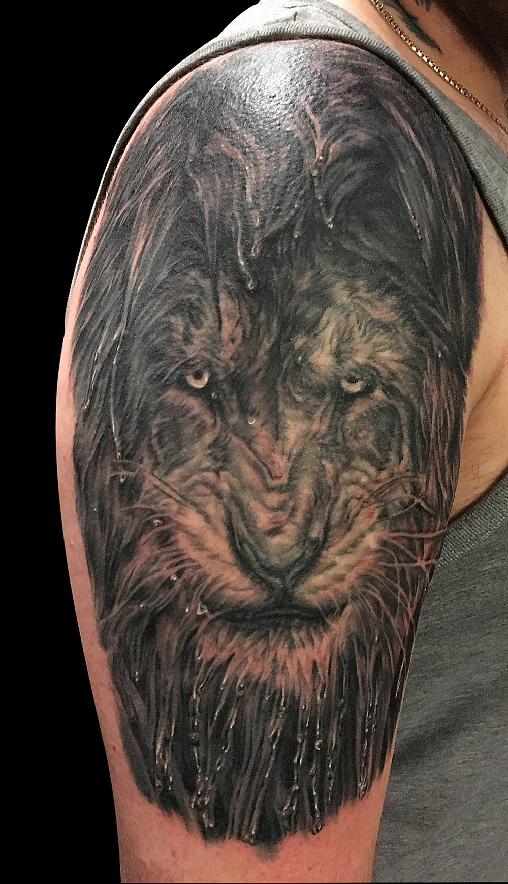 Black and Grey Wet Lion Portrait Tattoo, in progress