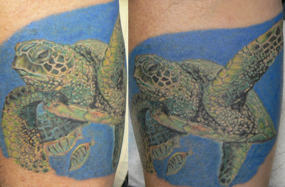 Color Realistic Sea Turtle Tattoo (tattoo is in the final stages of the healing process in this photo)  This was tattooed on Hal, one of my favorite clients and one hell of a guy. R.I.P.