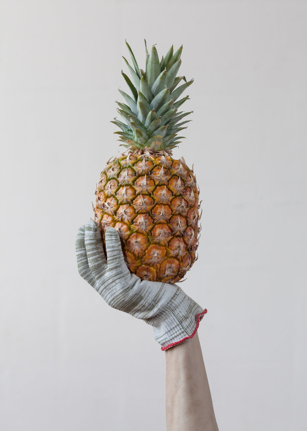 Pinapple Held by Gloves (1 of 2), 2014 Inkjetprint auf Bütten, Edition von 5 + 2AP 80 x 112 cm
