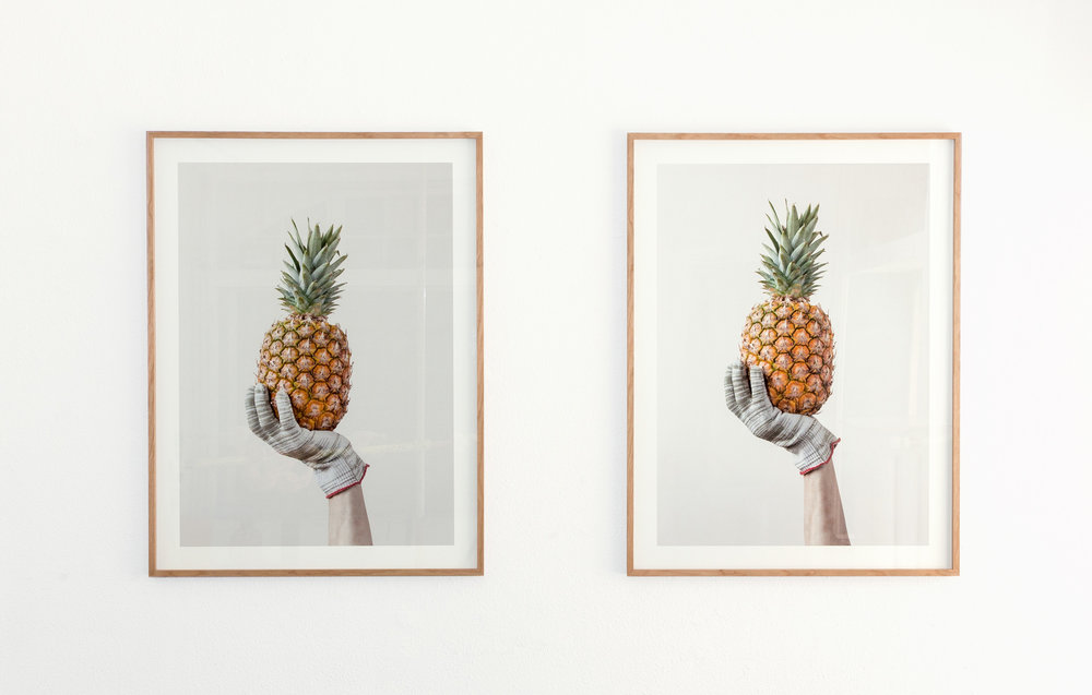 Pinapple Held by Gloves, 2014 Inkjetprint auf Bütten, Edition von 5 + 2AP 80 x 112 cm