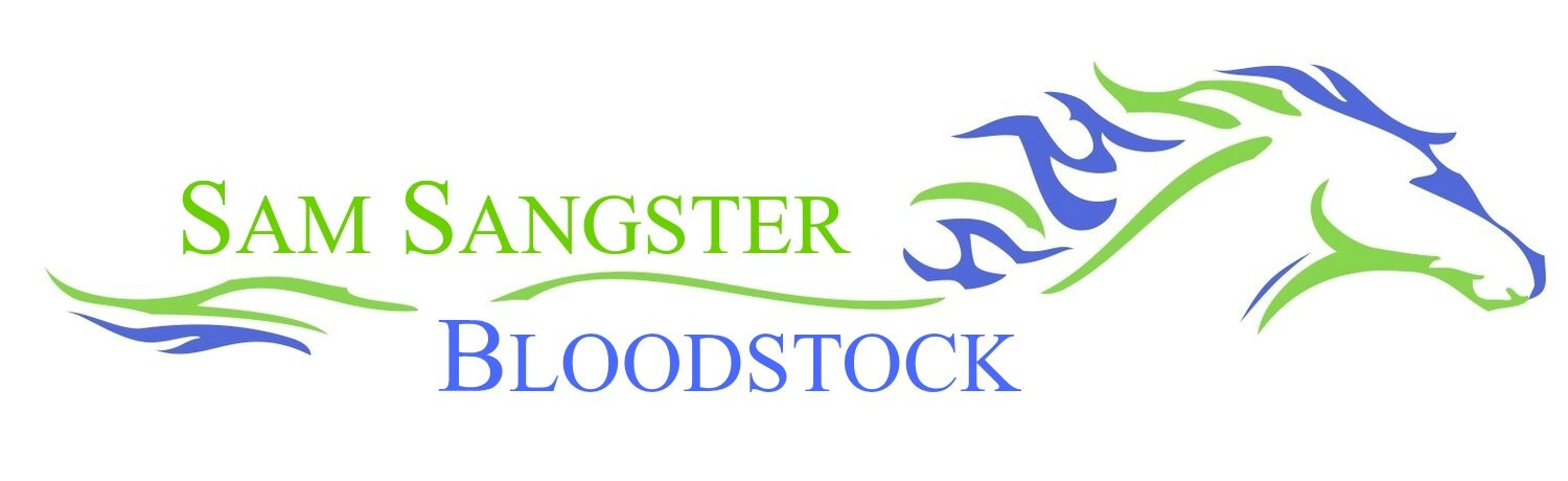 Sam Sangster Bloodstock