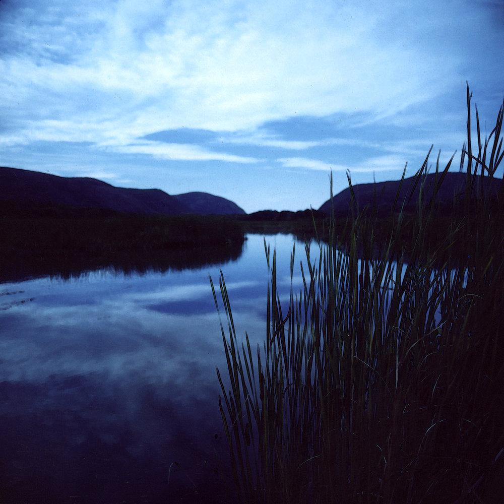 blue marsh.jpg