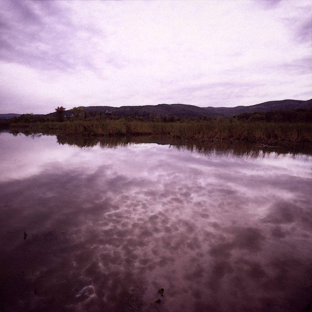 cloudy marsh.jpg