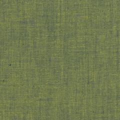 Lichen, Shot cotton, designed by Kaffe Fassett, Oak Fabrics, Chicago, IL