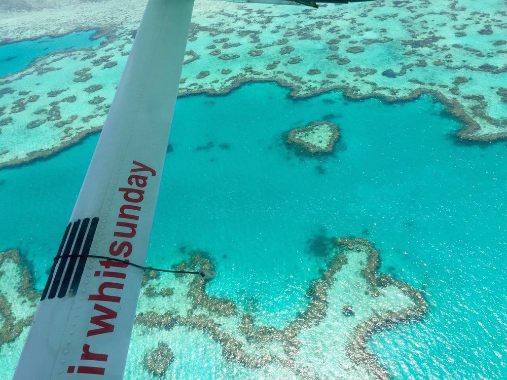 Personally, I felt the overall vista from the plane was more impressive, though the heart remains a symbol of the reef.