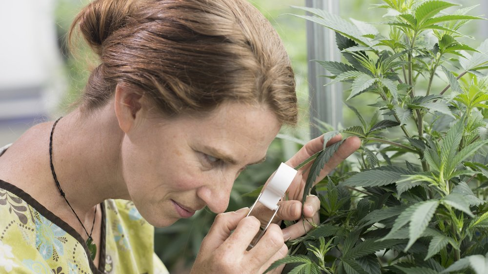 AA3 - Amy Looking at Plant (2).jpg