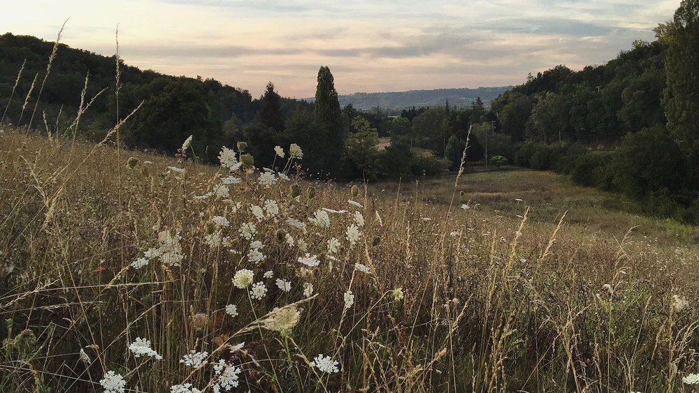 yoga and walking retreat