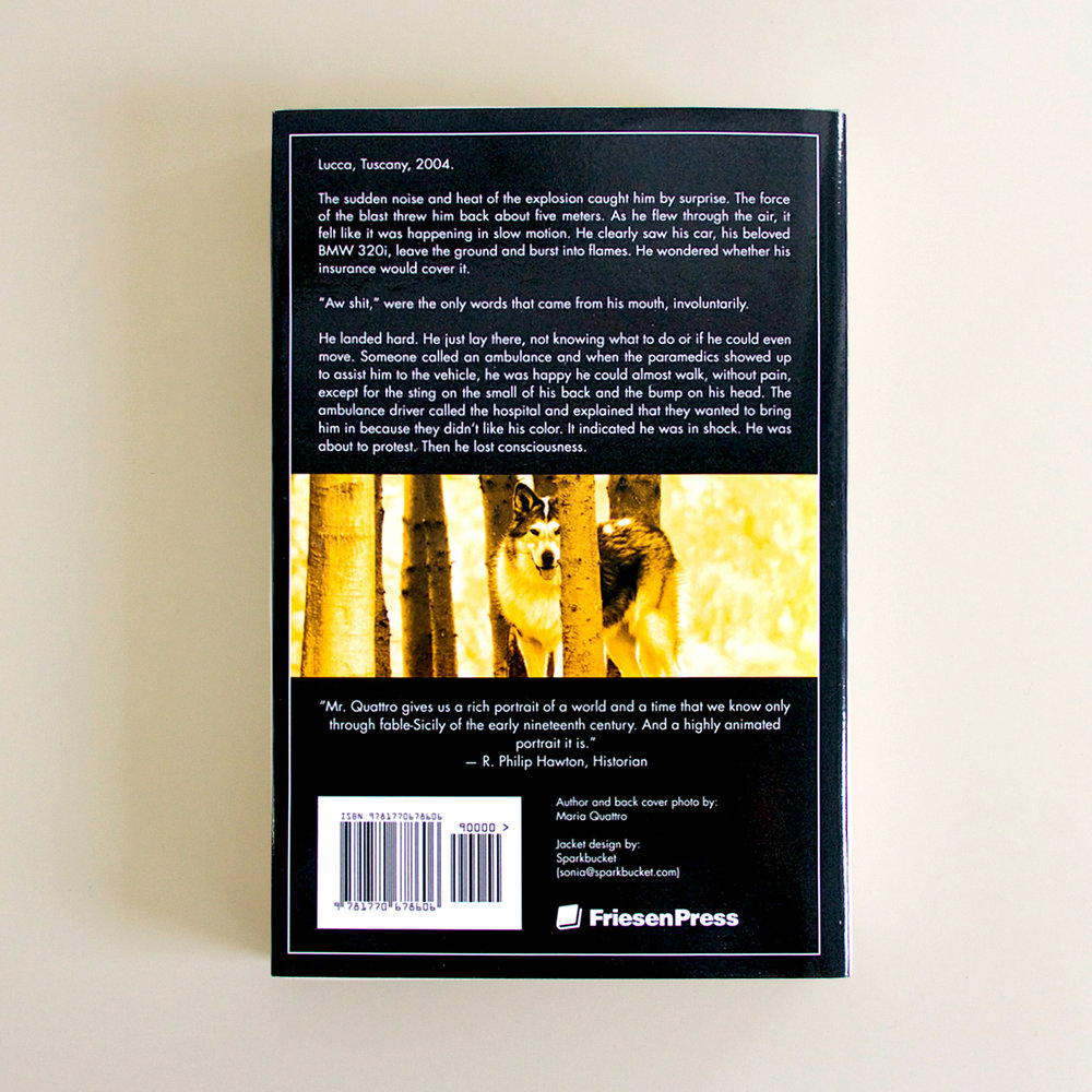 Book Cover Design - back