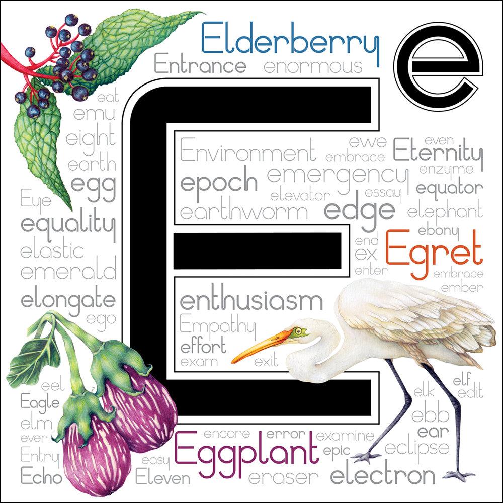 Letter E_SS.jpg