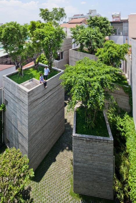 rooftop-trees.jpg